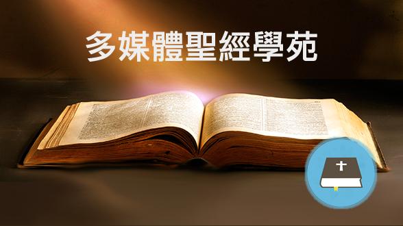 聖經金句 | 解答人生_插圖